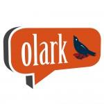 【自サイトにチャットを】チャットサービスのOlarkを試してみた